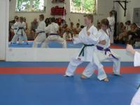 kihon-ippon-kumite