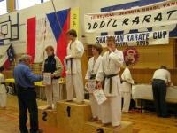 Robert a David 3.m. kumite